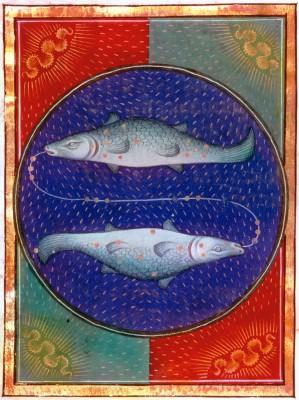 burçlar ingilizce pisces hangi burç balık burcu